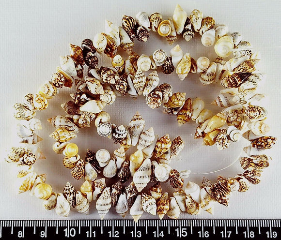 Brown and white 6mm x 14mm shell beads  12 inch strand