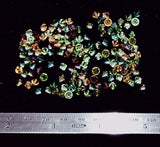 Swarovski crystal Forest mixture  green/brown 4mm bicone abt. 144 bead lot