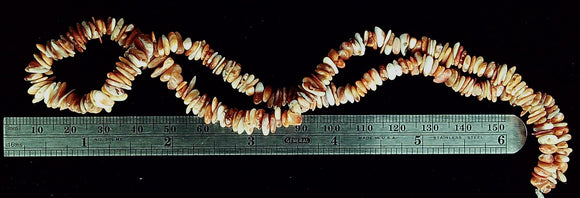 Spiny oyster shell white and orange polished small chip bead strand