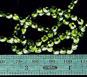 Green glass 4mm faceted round beads 16 inch strand