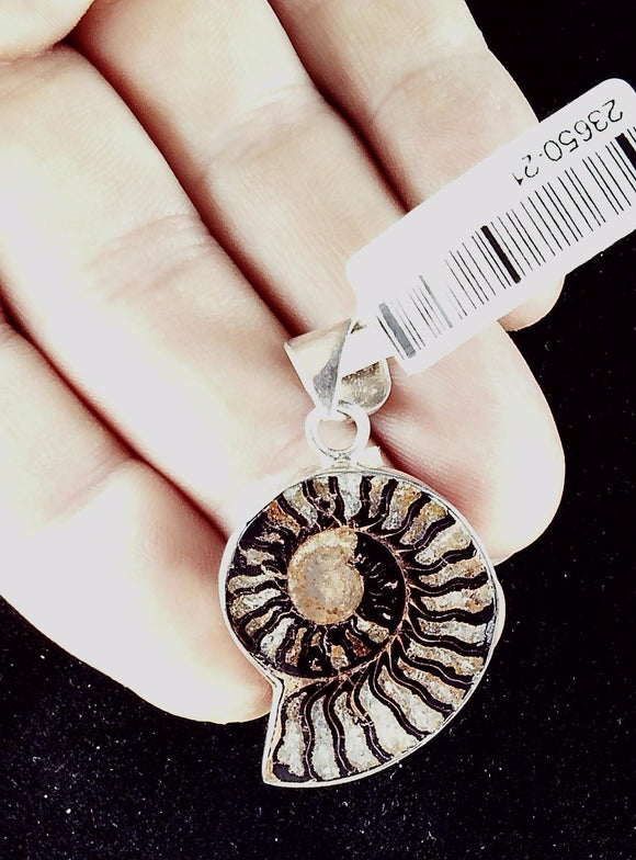 Ammonite Fossil Pendant with Sterling bezel 30mm x 25m