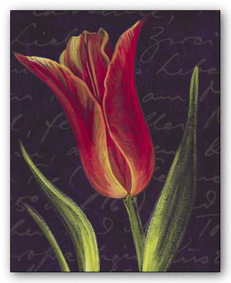 Tulip by JM Designs