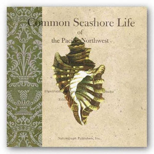 Seashore Life by Paula Scaletta