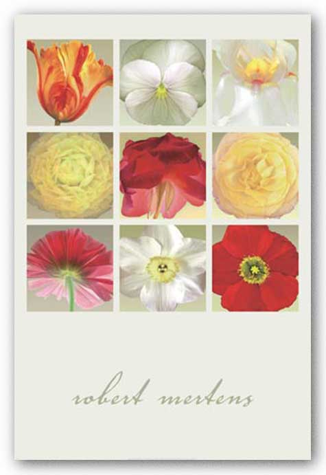 Flowers Collection by Robert Mertens