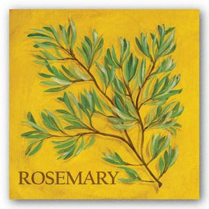 Rosemary by Kate McRostie