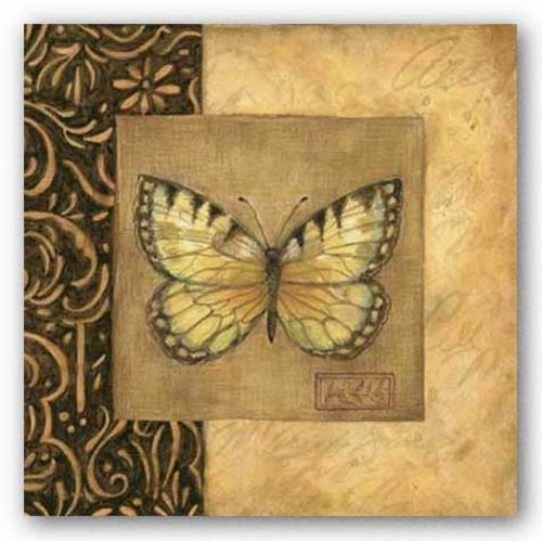 Butterfly Square by Susan Winget
