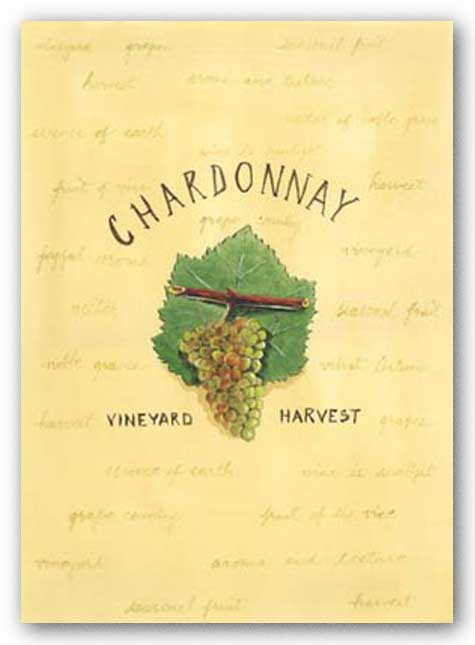 Chardonnay by Katharine Gracey