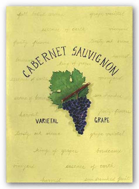 Cabernet Sauvignon by Katharine Gracey