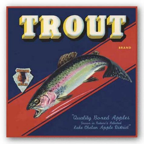 Trout by Miles Graff Collection