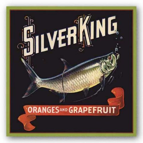 Silver King by Miles Graff Collection