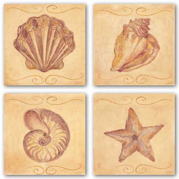 Starfish, Nautilus, Conch, and Scallop Set by Shari White
