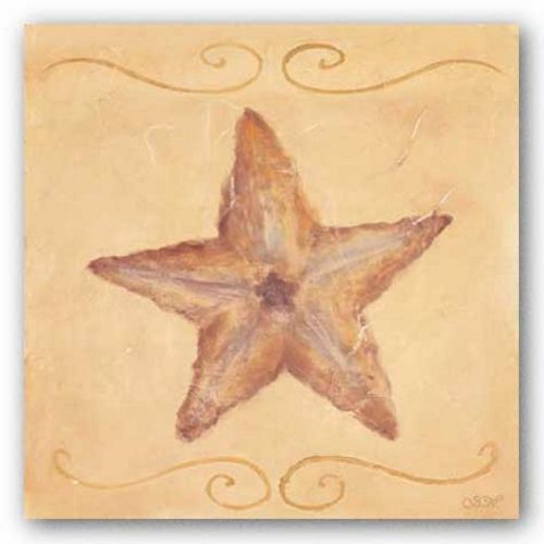 Starfish by Shari White