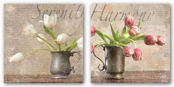 Dutch Tulips Set by Guy Cali Gaetano Images, Inc.