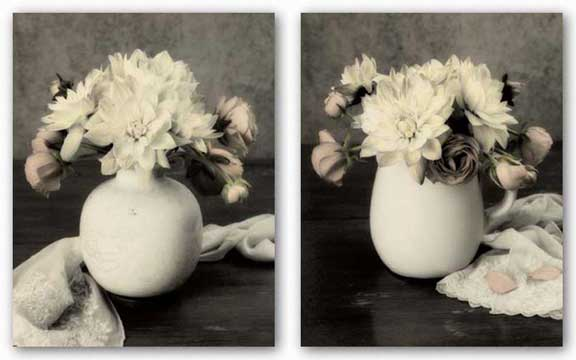 White Blooms Set by Dianne Poinski