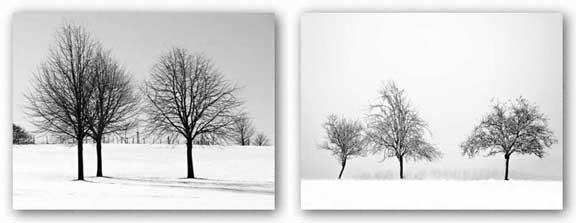 Silhouettes of Winter Set by Ilona Wellmann