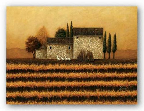 Fall Vineyard  by Lowell Herrero