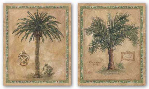 Palm Carpoxylon and Phoenix Canariensis Set by Betty Whiteaker