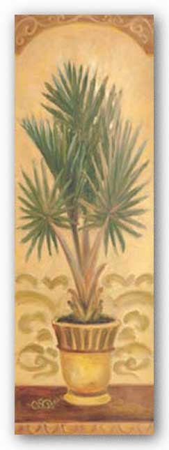Tuscan Palm II by Shari White