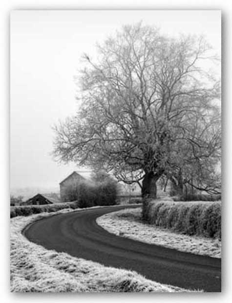 Misty Country Road by Stephen Rutherford-Bate