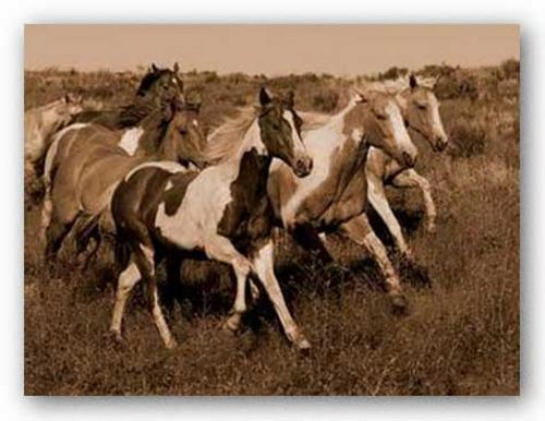 Horses Running II by Robert Dawson