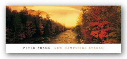 New Hampshire Stream by Peter Adams
