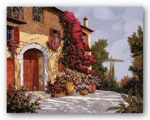 Bougainvillea by Guido Borelli
