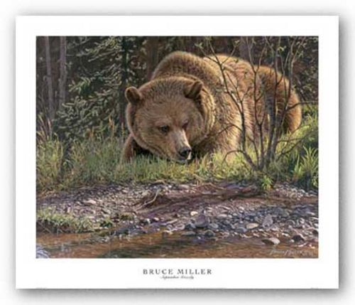 September Grizzly by Bruce Miller