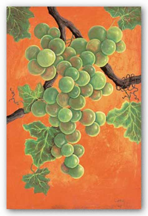 White Wine Grapes by Jennifer Lorton