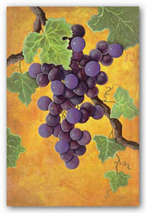 Red Wine Grapes by Jennifer Lorton