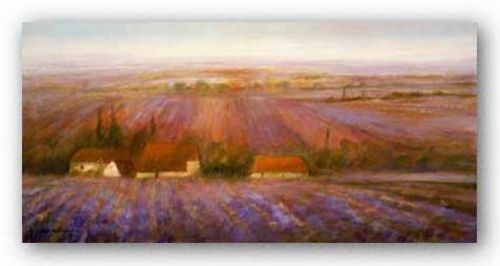 Sense Of Lavender by Ken Hildrew