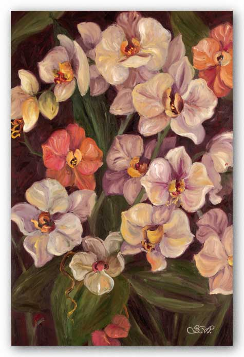 Orchids II by Shari White