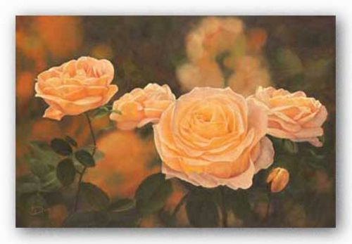 Mandarin Heirloom Roses by DINA