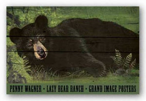 Lazy Bear Ranch by Penny Wagner