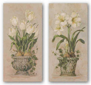 Bulbs In Bloom Set by Barbara Mock