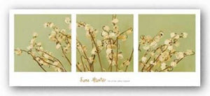 Lily of the Valley Triptych by June Hunter