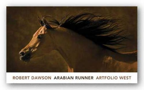 Arabian Runner by Robert Dawson