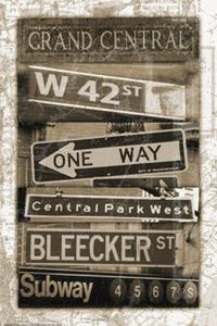 New York Street Signs 2 by Carole Stevens