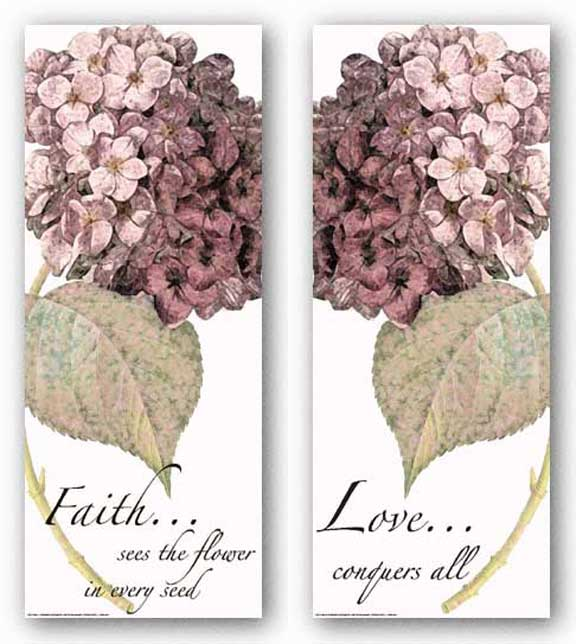 Words To Live By - Pink Hydrangea Set by Marilu Windvand