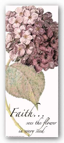 Words To Live By - Pink Hydrangea: Faith by Marilu Windvand