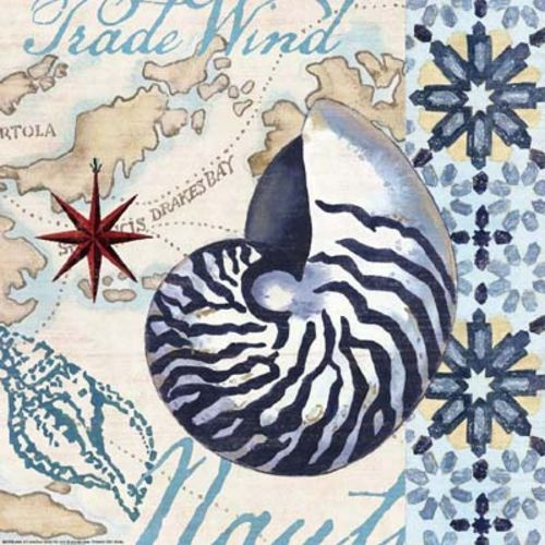 Trade Wind Nautilus by Jennifer Brinley