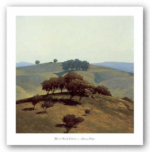 Hills Near Chico by Marc Bohne