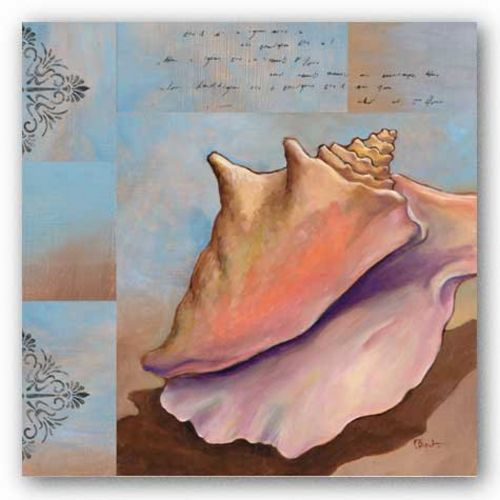 Sanibel Conch by Paul Brent
