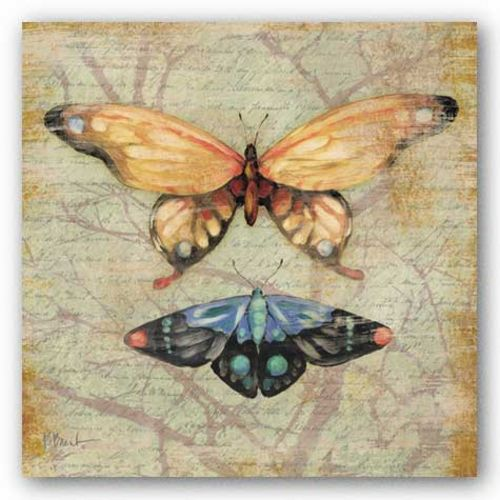 Vintage Butterflies II by Paul Brent
