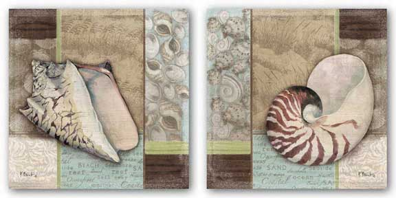 Santa Rosa Shell Set by Paul Brent