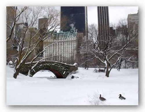 Love Bridge in Central Park, Winter by Igor Maloratsky