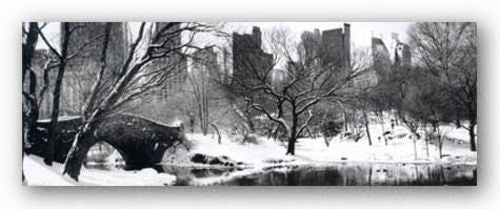 Love Bridge in Central Park, Winter Panorama by Igor Maloratsky
