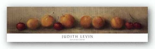 Apricots and Cherries by Judith Levin