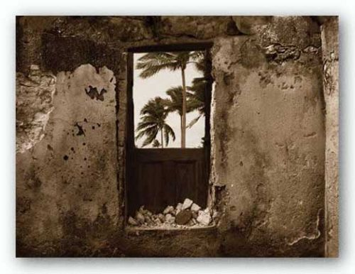 Palm View I by C.J. Groth