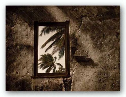 Palm View II by C.J. Groth