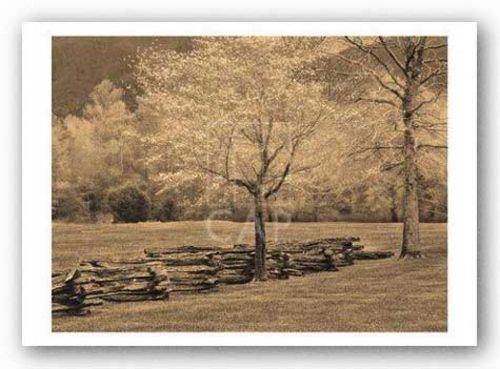 Smokies Fence by Wendy Caro